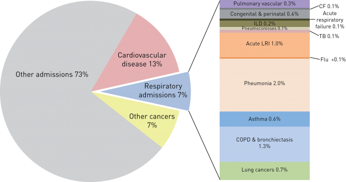 The burden of lung disease ers cf cystic fibrosis ild interstitial lung disease tb tuberculosis lri lower respiratory infections copd chronic obstructive pulmonary disease ccuart Choice Image