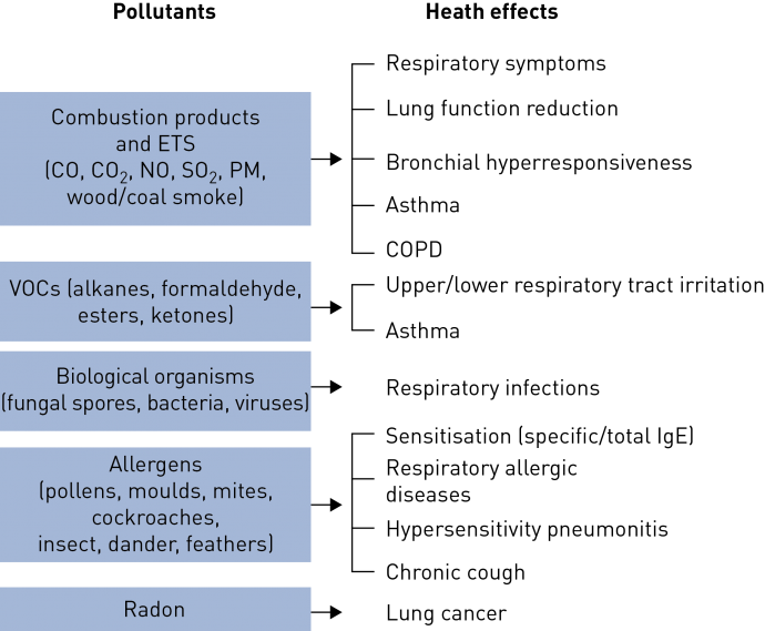 Figure 2 ers figure 2 the main respiratory health effects of common indoor pollutants ets environmental tobacco smoke co carbon monoxide co2 carbon dioxide sciox Gallery
